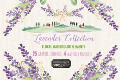 Lavender Collection by helloPAPER on @creativemarket