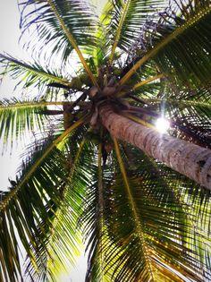 San Pedro, Belize. Paradise!