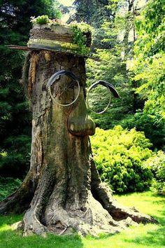 Gotta find a tree stump