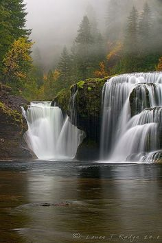 ✯ Lower Lewis River