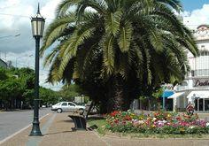 Ciudad de Rafaela, Provincia de Santa Fe