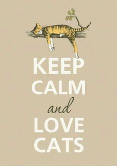 Hard to Keep Calm but I Do Love Cats! | Keep Calm and Love Cats | » ValeStrangeHouse.tumblr.com