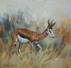 NEW ART ARRIVALS !!! Penelope Hunter 2015 40cm x 40cm springbuck oil on stretched canvas