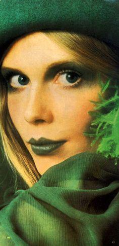 The Colour Craze  1970's