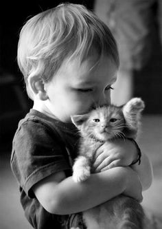 Adorable love, cute child kissing his cute kitty... click on picture to see more