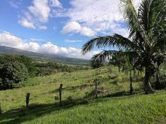 MPaniagua bienes raices: 0439001 Finca, Rio Naranjo, Fortuna, Bagaces, Guan...