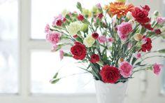 Скачать обои ваза, разные, цветы, гвоздики, раздел цветы в разрешении 1440x900