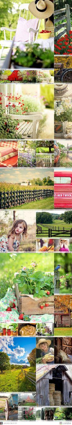 Country + Farm Living... Ahhhh! I love love love it!
