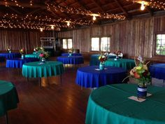 Kitsap Memorial State Park | Snuffin's Catering| Gig Harbor| Tacoma| Wedding| Event | Teal BLue | Royal Blue |