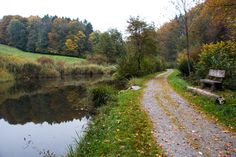 forest walk for strollers and little legs - Jonental Valley Walk