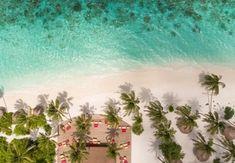 Strandurlaub | Sparen Sie bis zu 70% auf Luxusreisen | Secret Escapes Secret Escapes, Cactus Plants, Aquarium, Vacation Package Deals, Goldfish Bowl, Cacti, Aquarium Fish Tank, Cactus, Aquarius