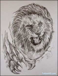 Lion tattoo designs Page 4 Lion Tattoo Images, Lion Head Tattoos, Shiva Tattoo Design, Lion Tattoo Design, Lioness Tattoo, Tiger Tattoo, Time Piece Tattoo, Tasteful Tattoos, Lion Drawing