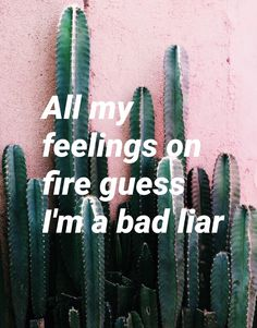 Bad Liar // Selena Gomez