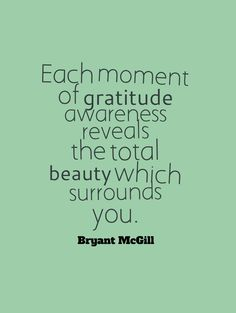 Each moment of gratitude awareness reveals the total beauty which surrounds you. -Bryant McGill