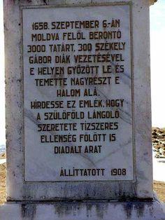 Elfeledett győztes csaták - Szárhegy (1658.szeptember 6.)  Dicső őseink példája lebegjen szemünk előtt napjainkban is!
