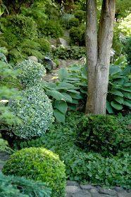 Romantik er vel noget, der kan opstå i haven gennem haveejerens mere eller mindre bevidste planlægning og tilrettelæggelse af haven, m... Wimbledon, Herbs, Gardening, Beautiful Gardens, Outdoors, Inspiration, Biblical Inspiration, Lawn And Garden, Herb