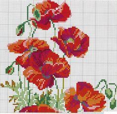 Gallery.ru / Фото #23 - Цветы 2 - logopedd