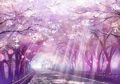 Find the best Anime Cherry Blossom Wallpaper on GetWallpapers. We have background pictures for you! Anime Scenery Wallpaper, Anime Backgrounds Wallpapers, Episode Backgrounds, Tree Wallpaper, Nature Wallpaper, Laptop Wallpaper, Anime Cherry Blossom, Cherry Blossom Wallpaper, Cherry Blossom Background