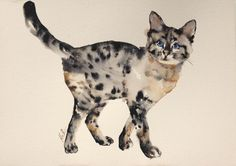 ARTFINDER: Cat by Kristina Broza -