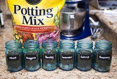 Mason Jar Herb Garden gonna do this once i have my own home ! Mason Jar Herbs, Mason Jar Herb Garden, Diy Herb Garden, Garden Crafts, Indoor Garden, Garden Projects, Indoor Plants, Outdoor Gardens, Mason Jars
