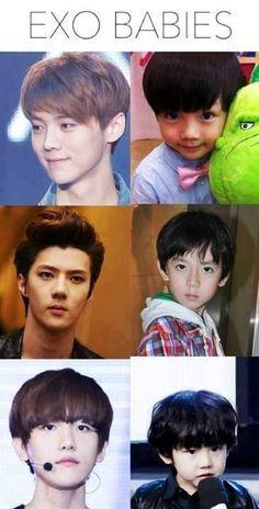 Little Luhan, Sehun, & Baekhyun. Even as a kid, Sehun suffered from resting bitch K Pop, Chanyeol Baekhyun, Park Chanyeol, Kpop Exo, Exo K, U Kiss, 2ne1, Got7, Exo Ot12