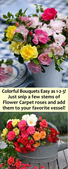 It's easy to create colorful bouquets! Just cut a few stems of Flower Carpet roses (each stem has at least 10 flowers!) and place them in your favorite vase. Cut Flower Garden, Cut Flowers, It's Easy, Stems, Shrubs, Floral Arrangements, Bouquets, At Least, Carpet