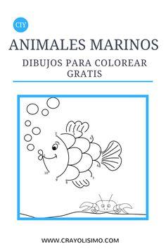 Dibujos de los animales marinos para colorear gratis