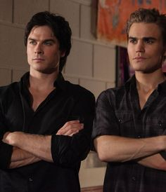 Which Salvatore Brother Should You Date? I got Stefan! Thought I wouldn't mind dating Damon either ;)