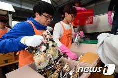 중국인 관광객 4000명 오늘 한강서 '삼계탕 파티'(종합) : 네이버 뉴스