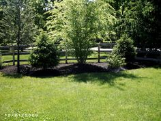 Create simple property lines by planting trees and other shrubbery.  This landscaping idea will add to any yard.