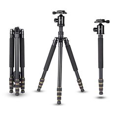 Mactrem Q666 645 Portable Magnesium Aluminum Detachable Monopod Professional Camera Tripod 360degree Ball Head 14 Quick Release Plate and for DigitalVideoDSLR Cameras  33lbs 15kg Max Load ** Want to know more, click on the image.Note:It is affiliate link to Amazon.