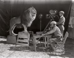 The beginning of the Hollywood era – CNN Photos. this is the filming of the lion that roars at the beginning of an mgm film taken in 1928.