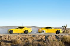 Camaro: The legendary muscle-car rivalry has lasted decades, but how did the cars evolve? Ford Mustang Gt, Ford Mustang Wallpaper, Chevrolet Camaro Ss, Camaro 2016, Automobile, Dream Car Garage, Car Photography, Muscle Cars, Dream Cars