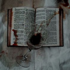 I imagine the King was reading before he died. He fell asleep and was murdered by Claudius. Sleeping in my orchard a serpent stung me The wine represents the Kings blood spilled on the book. The mess of a murder. Gothic Aesthetic, Slytherin Aesthetic, Witch Aesthetic, Book Aesthetic, Character Aesthetic, Aesthetic Photo, Aesthetic Pictures, Kreative Portraits, Yennefer Of Vengerberg