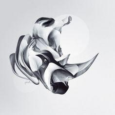 Rhino by David DELIN