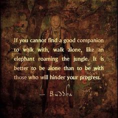 """""""If you cannot find a good companion to walk with, walk alone, like an elephant roaming the jungle. It is better to be alone than to be with those who will hinder your progress."""" - Buddha"""
