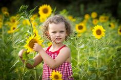 Isabel playing in the field of sunflowers - Children Photo © MH PhotoDesigns 2013