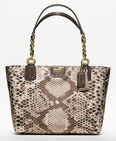 Everyday bag. COACH MADISON PYTHON PRINT TOTE.