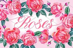 Roses by Watercolor life on @creativemarket