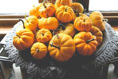 A host of mini jack-o-lanterns in an urn | The Gray Boxwood
