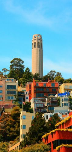 Coit Tower, San Francisco, I have been to the top of this tower. It was so foggy out, could not see the city well. Coit Tower San Francisco, Baie De San Francisco, San Francisco City, San Francisco Travel, San Francisco California, California Dreamin', Northern California, San Diego, Places To Travel