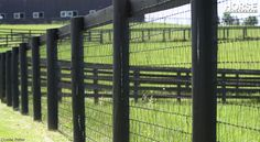 3 Simple and Crazy Tips: Short Fence Beautiful modern chain link fence.Modern Fence Room Dividers front yard fence on hill. Front Yard Fence, Farm Fence, Dog Fence, Fence Landscaping, Backyard Fences, Garden Fencing, Mesh Fencing, Backyard Ideas, Garden Ideas