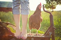 "only in the country...rolled up jeans, pet chicken, bare feet....and red painted toe nails! Yup...that is a ""country girl!"""