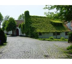 Golsa - beautiful houses