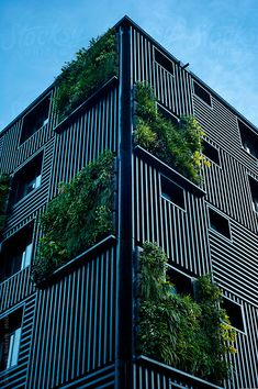 To beautify your workplace or house, vertical gardening is filed with the most novel and outstandingly modern ideas. Those eye-catching, green living walls with colorful flowers impart stylish and mind-blowing chic to the place. Architecture Design Concept, Green Architecture, Facade Design, Landscape Architecture, Exterior Design, Minimalist Architecture, Building Facade, Green Building, Vertical Green Wall