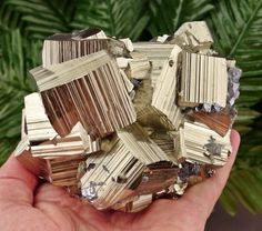 Amazing PYRITE (Fool's Gold) Crystal from famous September Mine, Bulgaria , Crystal, Mineral, Natural Crystal Minerals And Gemstones, Crystals Minerals, Rocks And Minerals, Stones And Crystals, Fool Gold, Cool Rocks, Rock Collection, Rocks And Gems, Natural Crystals