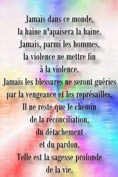 Contre La Maltraitance La Violence Et La Cruaute Des Hommes