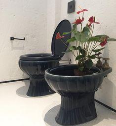 Plantas para banheiro: 36 espécies que trazem mais frescor ao ambiente Feng Shui, Bathroom Sink Design, Bathroom Cabinets, Ponds Backyard, Interior Plants, Home And Living, Indoor Plants, Outdoor Gardens, Flower Power