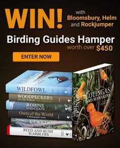 Enter To Win, Bloomsbury, Hamper, Fill, Competition, Tours, Adventure, Amazing, Adventure Movies