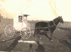Photograph of rural carrier with horse and wagon by Smithsonian Institution, via Flickr